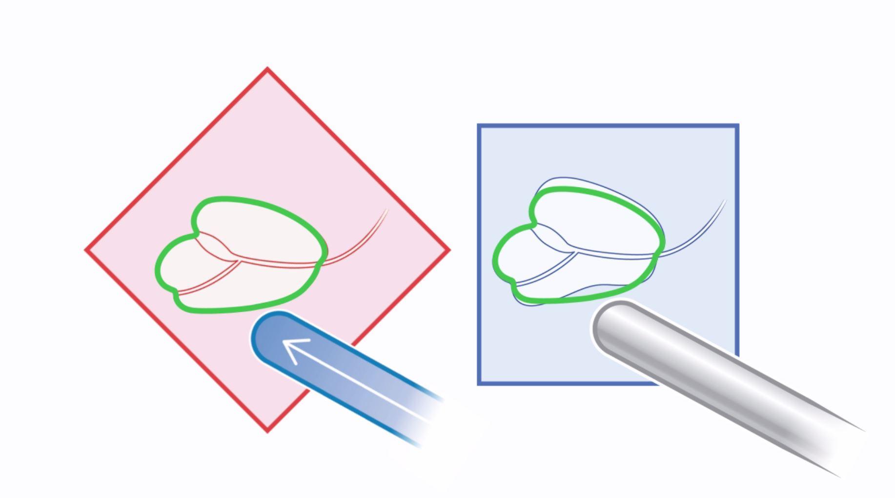 Fusion image2.jpg